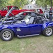 Постер, плакат: Purple & White 1965 Ford Shelby Cobra Engine Side