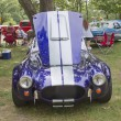 Постер, плакат: 1965 Ford Shelby Cobra Engine