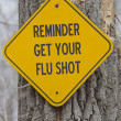 Stock Photo: Reminder Get Your Flu Shot Sign
