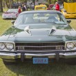 Постер, плакат: 1974 Plymouth Roadrunner front view