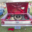 Постер, плакат: 1963 Red Ford Fairlane Rear view