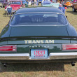 Постер, плакат: 1973 Pontiac Trans Am Firebird Rear View