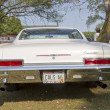 Постер, плакат: 1966 Chevy Impala Rear View