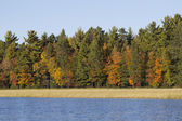 Fall Colorful Scene on the Wisconsin River — Stock Photo