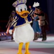 Donald Duck - Stock Photo