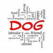 Dog Word Cloud Concept in red caps — Stock Photo
