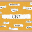 CEO Corkboard Word Concept — Foto de Stock