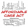 Stock Photo: Affordable Care Act Word Cloud Concept in Red Caps