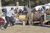 Lumberjack Two Man Bucksaw competition — Stock Photo