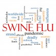 Swine Flu Word Cloud Concept — Stock Photo