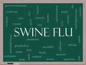 Swine Flu Word Cloud Concept on a Blackboard — Stock Photo