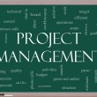 Foto Stock: Project Management Word Cloud Concept on Blackboard