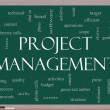 Project Management Word Cloud Concept on a Blackboard — Stock Photo