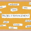 Foto Stock: Project Managment Corkboard Word Concept