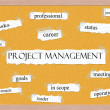 Stockfoto: Project Managment Corkboard Word Concept