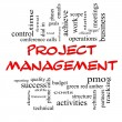 Foto Stock: Project Management Word Cloud Concept in Red Caps