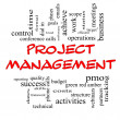 Foto de Stock  : Project Management Word Cloud Concept in Red Caps