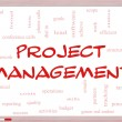 Foto de Stock  : Project Management Word Cloud Concept on Whiteboard