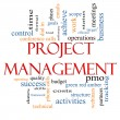 Stock Photo: Project Management Word Cloud Concept