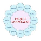 Proje yönetimi dairesel kelime kavram — Stok fotoğraf