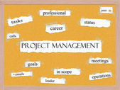 Project Managment Corkboard Word Concept — Photo
