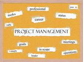 Proje yönetimi corkboard kelime kavram — Stok fotoğraf