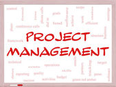 Proje yönetimi kelime bulutu kavramı bir beyaz tahta üzerinde — Stok fotoğraf