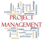 Project Management Word Cloud Concept — Stock Photo