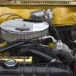 1965 Studebaker Commander Engine — Stock Photo #28252695
