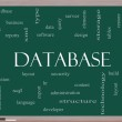 Database Word Cloud Concept on a Blackboard — Stock Photo