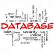 Stock Photo: Database Word Cloud Concept in Red Caps