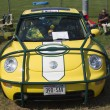 2002 Green Bay Packers VW Beetle Front View — Stock Photo