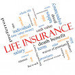 Life Insurance Word Cloud Concept Angled — Stock Photo #38064117