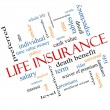 Stock Photo: Life Insurance Word Cloud Concept Angled