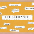 Stock Photo: Life Insurance Corkboard Word Concept