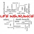 Stock Photo: Life Insurance Word Cloud Concept on Blackboard