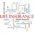 Stock Photo: Life Insurance Word Cloud Concept