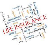 Life Insurance Word Cloud Concept Angled — Stock Photo