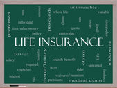 Life Insurance Word Cloud Concept on a Blackboard — Stock Photo