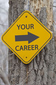 Your Career Arrow Sign on Tree — Stock Photo