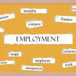 Stock Photo: Employment Corkboard Word Concept