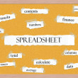 Spreadsheet Corkboard Word Concept — Stockfoto #38227965