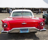 1957 Red Ford Thunderbird Rear View — Stock Photo