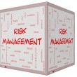 Stock Photo: Risk Management Word Cloud Concept on 3D Cube Whiteboard