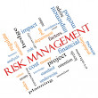 Risk Management Word Cloud Concept Angled — Stock Photo #38596881