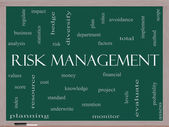 Risk Management Word Cloud Concept on a Blackboard — Stock Photo