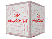 Risk Management Word Cloud Concept on a 3D Cube Whiteboard — Stock Photo