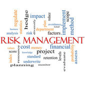 Risk Management Word Cloud Concept — Stock Photo