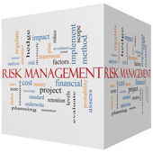 Risk Management 3D cube Word Cloud Concept — Stock Photo
