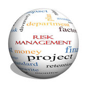 Risk Management 3D sphere Word Cloud Concept — Stock Photo
